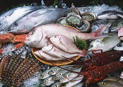 Chọn mua hải sản tươi ngon - bí kíp dành cho các nhà nội trợ