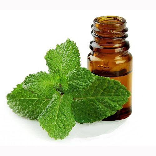 TINH DẦU BẠC HÀ NGUYÊN CHẤT ( Peppermint essential oil )