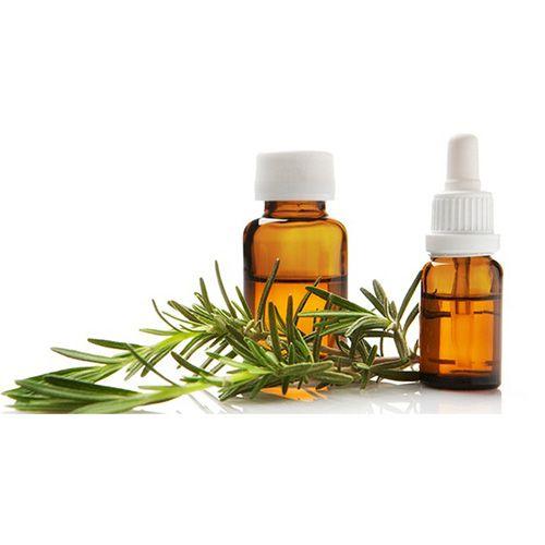 TINH DẦU HƯƠNG THẢO NGUYÊN CHẤT ( Rosemary essential oil )