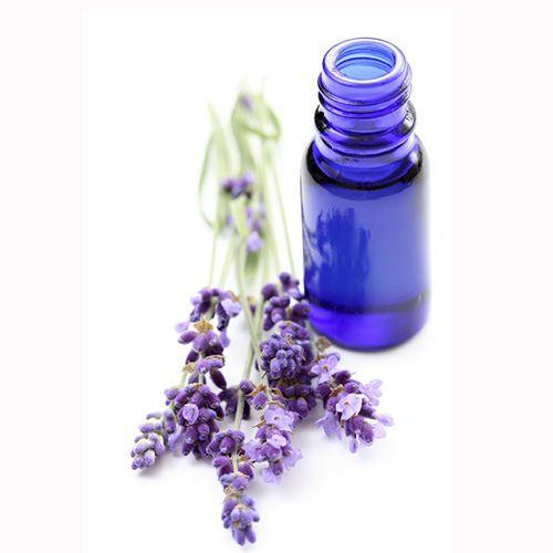 TINH DẦU OẢI HƯƠNG NGUYÊN CHẤT ( Lavender essential oil )